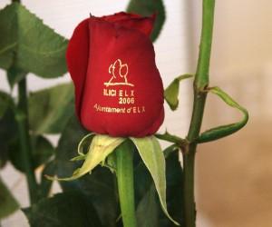 Anuncio - Rosas serigrafiadas