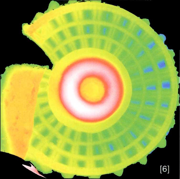 Información codificada por colores indicando el relieve de la superficie. El proyecto Duple consiste en clonar la Dama de Elche mediante el digitalizado de toda su superficie a alta resolución para posteriormente